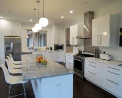 Chestnut Hill Kitchen Renovation